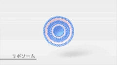 インフォマーシャル用CG作例(リポソーム)