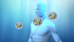 ウイルスと人体イメージCG作例