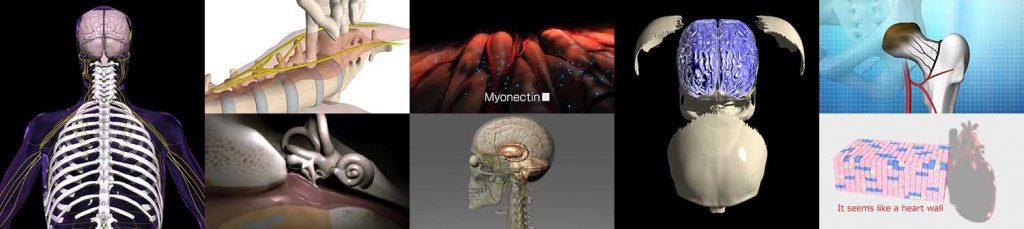医療映像制作の作例