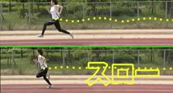 解析映像の事例