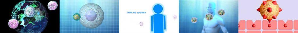 新型コロナウイルスなど感染メカニズムCG作例